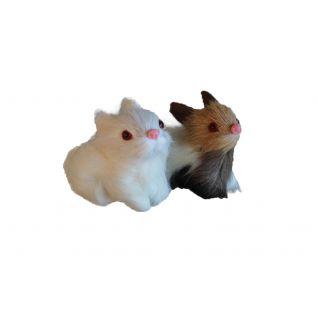 Кролики средние