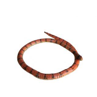 Змея большая