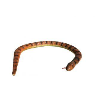 Змея малая